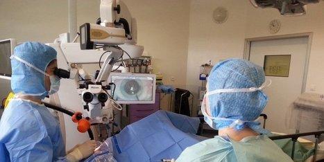 L'hôpital de Blaye se dote d'une technologie unique pour opérer la cataracte | Santé & Médecine | Scoop.it
