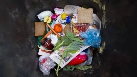Parlamentsbeschluss: Französische Supermärkte dürfen keine Lebensmittel mehr wegwerfen   Agrarforschung   Scoop.it