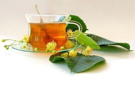 Natural Health Benefits of Basil Tea - Total Health Care Tips | Online Health Care Tips | Scoop.it