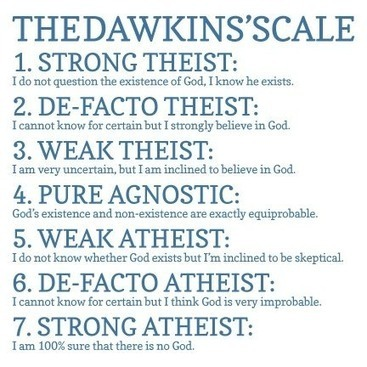 Subject To Reason: Why I'm a 7 on Dawkins' Atheist Scale. | Atheism Today | Scoop.it