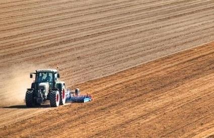 Agricoltura, crescono le assunzioni in Italia - Agrinotizie - AgriNotizie   Prodotti Tipici   Scoop.it