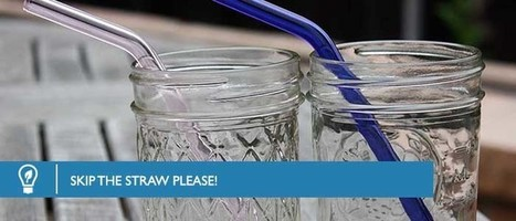 Skip The Plastic Straw PLEASE! - Water Liberty   Love Your Water   Plastic Pollution   Scoop.it