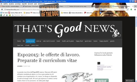 Expo 2015: un'occasione anche per l'occupazione. CV pronti? - Fiera Milano - Travel Network | Expo2015 Milan and .. Italy | Scoop.it