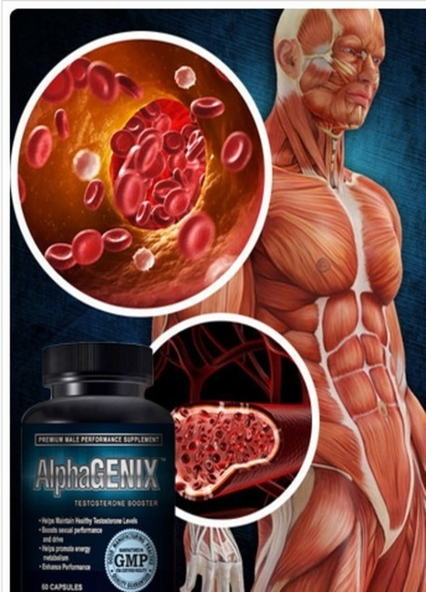 AlphaGenix Testosterone Booster Reviews - Get Risk Free Trial Now | Get what you have thought of! | Scoop.it