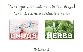 MRLUNKs HideOut: What are Drugs ? | MrLunk's Cannabis Hideout... | Scoop.it