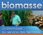 Biomasse-territoire.info - bienvenue | Agriculture urbaine, architecture et urbanisme durable | Scoop.it