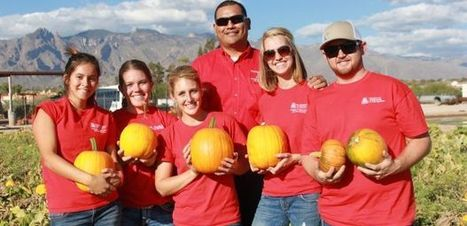 CALS Ambassadors Harvest Pumpkins and Marketable Skills | UANews | CALS in the News | Scoop.it