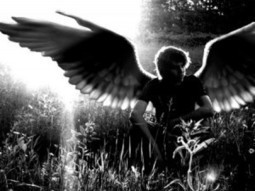 New Wings | Donna Stanley | YA Christian/Paranormal Fiction | vampire alternative | Scoop.it