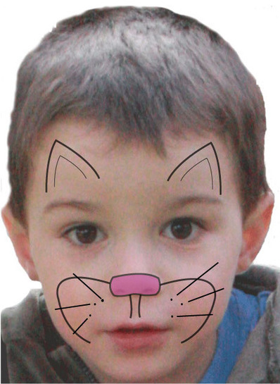 Maquillage Chat Pour Enfant Tuto Maquillage En