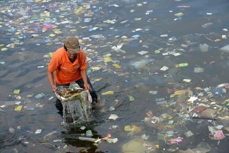 La Grande-Motte : des poubelles-aspirateurs pour les déchets en pleine mer | Déchets & Assainissement | Scoop.it
