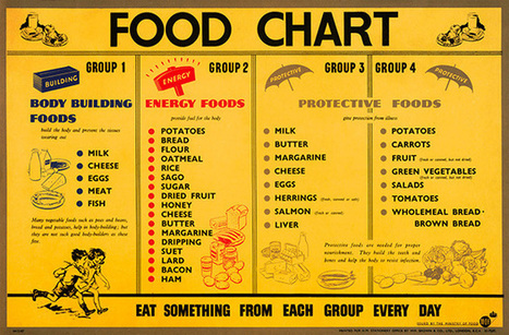 Food Chart | 4 Food Groups by health benefits | Basic Food Chart | chemical world | Scoop.it