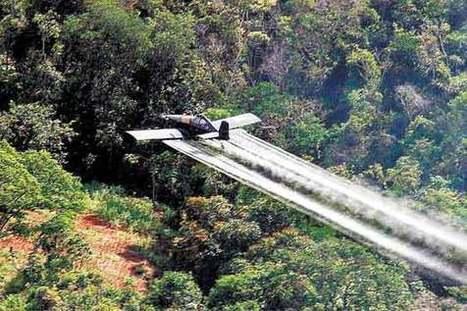 Consejo de Estado prohibió aspersión con glifosato en parques nacionales naturales | Herbicidas | Scoop.it
