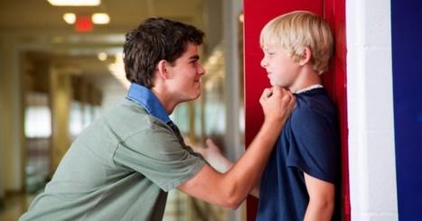 Cómo se comporta un agresor y la victima   Bullying   Scoop.it