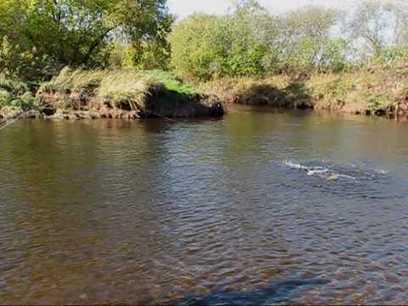 Salmon fishing, River Philip, Nova Scotia | | Nova Scotia Fishing | Scoop.it