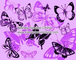 What Can Cause People To Have Lupus Nephritis | The doctor of traditional Chinese medicine treatment of chronic kidney disease | Scoop.it