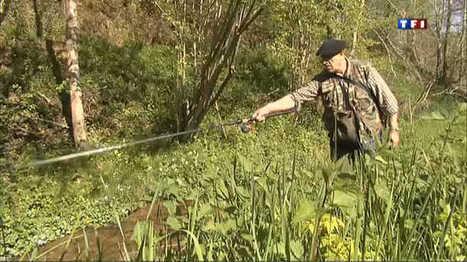 Découverte des Pyrénées : partie de pêche dans les Baronnies -  Le journal de 13h - TF1   Vallée d'Aure - Pyrénées   Scoop.it