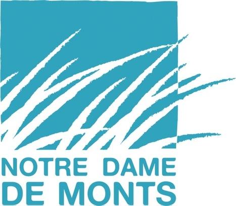 Office de Tourisme Notre Dame de Monts (notredamedemont) | Animation Numérique de Territoire Notre Dame de Monts | Scoop.it