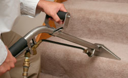 Cleaning Network - Find Dry & Steam Carpet Cleaning Services in Adelaide | Tips For Keeping Your Carpet Clean | Scoop.it