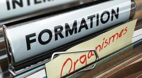 [Ressources humaines] L'actualité Formation : Réforme : comment les organismes adaptent leur offre de formation? | Opcalia | Scoop.it