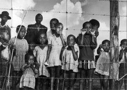 IU professor curates apartheid-era photo exhibition for display in Bloomington ... - Indiana University | Grade 11 | Scoop.it