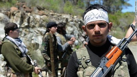 Helping Syrian rebels a dangerous risk | Syria: what do we do? | Scoop.it