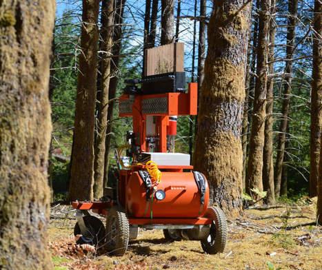 Un robot pour planter des arbres et lutter contre la déforestation | The Blog's Revue by OlivierSC | Scoop.it