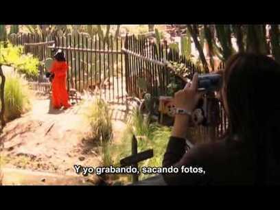 exit trough the gift shop subtitulada en español   documentales   Scoop.it