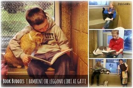 Book Buddies: i bambini che leggono libri ai gatti [FOTO] | Italica | Scoop.it