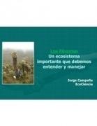 Los Páramos: un ecosistema importante que debemos entender y manejar   Jorge Campaña en Scribd   Educación ambiental para la protección de páramos   Scoop.it