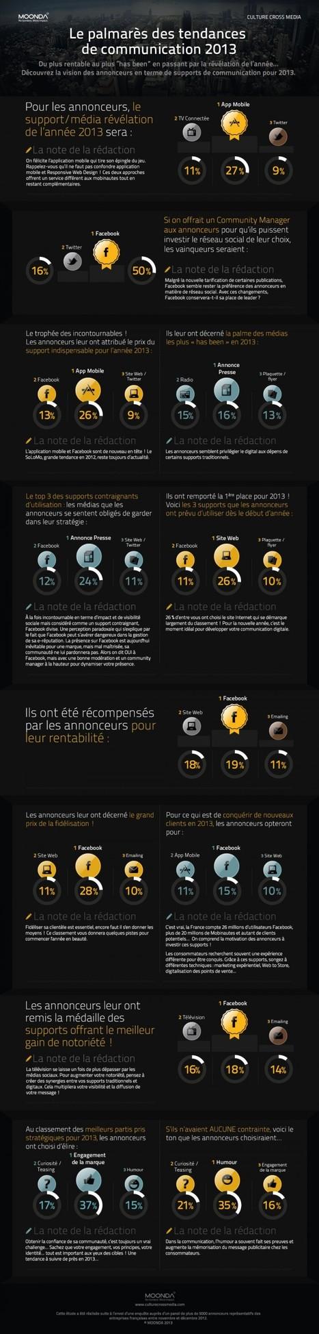 [Infographie] Supports de com : la vision des annonceurs pour 2013 | Autres Vérités | Scoop.it