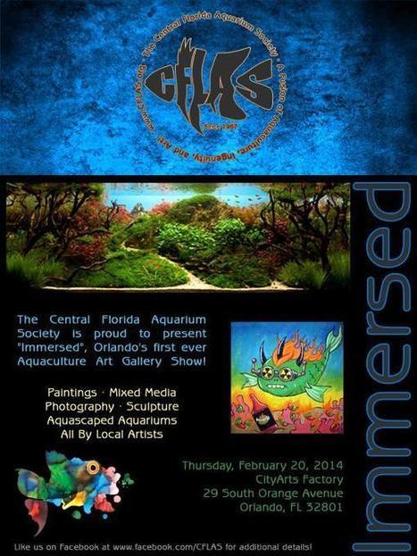 Immersed Aquaculture Art Gallery Exhibition Presented By The Central Florida Aquarium Society | Facebook | Aqua Events & e-Publications | Scoop.it