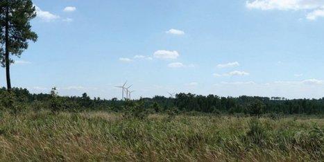 Cinq éoliennes de 180 mètres toujours en projet dans le Libournais | Vie et patrimoine à St Martin-du-Bois (33) | Scoop.it