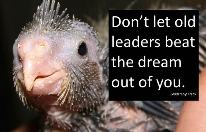 32 Things to say to Young Leaders