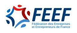 Dominique Amirault : Négociations commerciales 2016. Peut mieux faire... > Fédération des Entreprises et Entrepreneurs de France   Mélanges technologiques pour la charcuterie   Scoop.it