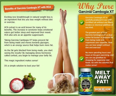 Interested In Garcinia Cambogia XT? Don't BUY! Read First!!! | Fix a Flat Tire Without a New Inner Tube | Scoop.it