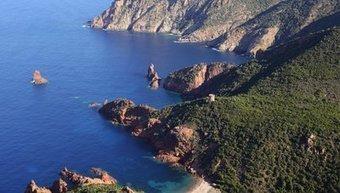 Importante pollution d'hydrocarbures au large de Scandola en Corse | Toxique, soyons vigilant ! | Scoop.it