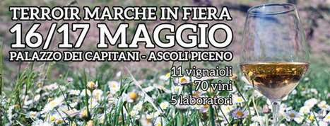 TerroirMarche event on May 16-17 in Ascoli Piceno is going to be a game-changer. | Wines and People | Scoop.it