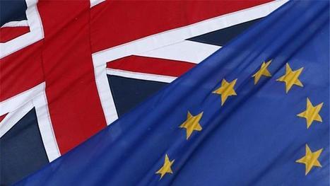 EU referendum issues guide: Explore the arguments - BBC News | Economics in Education | Scoop.it