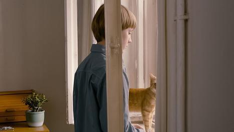 The Poetry of Confined Quarters: Ramon Zürcher's The Strange Little Cat - Cinema Scope | The Everyday | Scoop.it