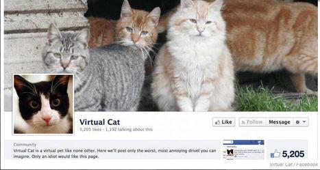 Les gens qui pensent que Facebook est pollué de faux likes sont obsédés par cette vidéo | Social Media, Community Management et e-réputation. | Scoop.it