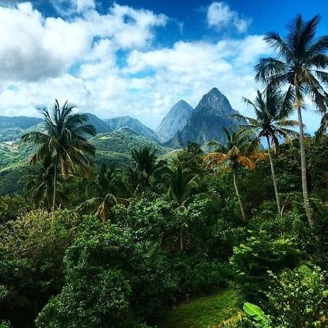 #Wanderlust Wednesday Feature: Saint Lucia's Rainforest | Saint Lucia Tourism | Scoop.it