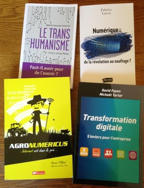 Sélection de 10 livres ès numérique pour l'été » I David Fayon | Entretiens Professionnels | Scoop.it