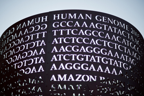 Google Partners With Broad Institute Of MIT And Harvard To Bring Genome Analysis Tool To Its Cloud Platform | Realms of Healthcare and Business | Scoop.it