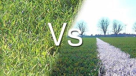 Quel type de pelouse choisir pour les terrains de sport : synthétique ... - Francetv info   Tout sur le Gazon Synthetique   Scoop.it