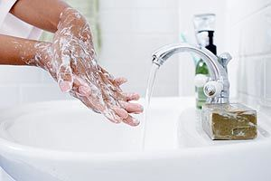 Dishing the dirt on the germs in your home | The Sun (UK) | CALS in the News | Scoop.it