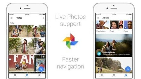Google Foto introduce il supporto alle Live Photos di iPhone 6S e 6S Plus | Scoop Social Network | Scoop.it
