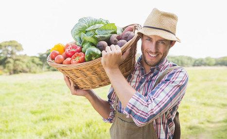 Si l'on remplaçait l'agriculture industrielle par de petites fermes agro-écologiques locales ? | CaféAnimé | Scoop.it