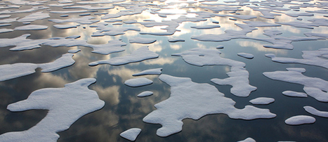 Survey Reveals Worldwide Fears of Climate Change | EcoWatch | Scoop.it