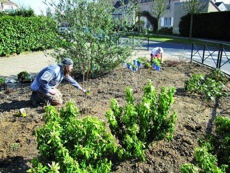 En Île-de-France, de plus en plus de communes optent pour des espaces verts « zéro pesticide » | TRANSITURUM | Scoop.it