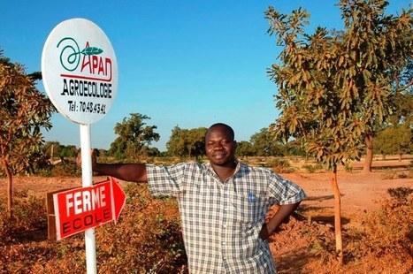 Burkina Faso : la relève agroécologique pour l'autonomie des paysans | Chimie verte et agroécologie | Scoop.it